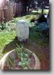 Zahradní4
